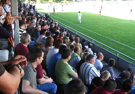 fc wels blau weiss linz fussball regionalliga österreich